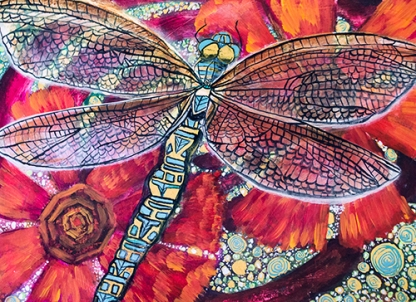 Dragonfly Dreaming